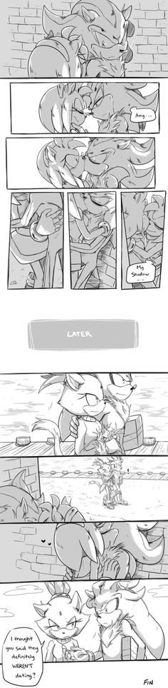 i DONT ship Shadow & Amy it just doesn't seem right Amy is too nice and EVERYBODY knows she's obsessed with Sonic. Shadow needs someone to match him. The illustrations are good though. credit to the artist. Silver The Hedgehog, Shadow The Hedgehog, Sonic The Hedgehog, Shadow And Amy, Sonic And Shadow, Shadamy Comics, Sonic Fan Characters, Sonic And Amy, Sonic Fan Art