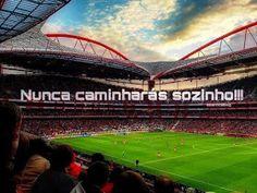 Vemo-nos na Nossa Catedral: Benfica a bater recordes Baseball Field, End Of The World, Baseball Park