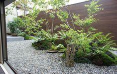 いろんな目線の高さで楽しめる庭 Atrium Garden, Ferns Garden, Indoor Garden, Indoor Plants, Home And Garden, Small Garden Japan, Zen Garden Design, Landscape Design, Pocket Garden