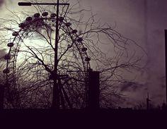 London eye window shadow