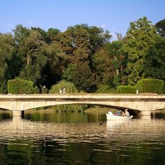 Today's mood: waiting for the summer. #Bucharest  __________________________  #park #life #city #water #lake #beauty #mycountry #travel #world #peace #freedom #colors #green #nature #place #life #dreams #energy #magic #Romania