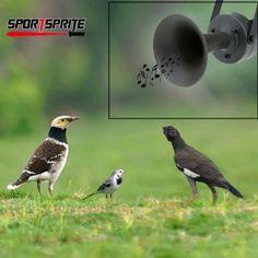 Outdoor Hunting Bird mp3 Caller Louder Speaker Decoy Built-in Amplifier 125db