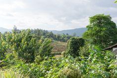 Views around Chiang Mai