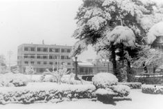 Takis Kordaris Πλατεία Άρεως και στο βάθος το Ξενοδοχείο Μαίναλο! Greece, Snow, Country, Outdoor, Beautiful, Greece Country, Outdoors, Rural Area, Country Music