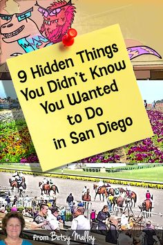 "You may not find these on most of those ""things to do"" lists, but they're all a lot of fun. California Outfits, California Vacation, California Dreamin', San Diego Vacation, San Diego Travel, Coronado Island, San Diego Living, Travel Expert, Rainy Day Activities"