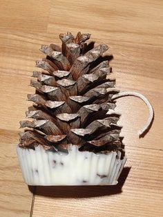Fire starters made from birch bark and pine cones and wax soaked cords for fireplaces