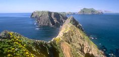 Camped and hiked on Santa Cruz Island in Channel Islands Nat'l Park, CA - Feb. 26th-28th