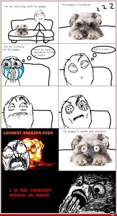 all.the.time. and my dog even looks like that!