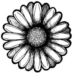 Google Image Result for http://www.eclecticcycle.com/wp-content/uploads/2012/02/daisy-copy.jpg