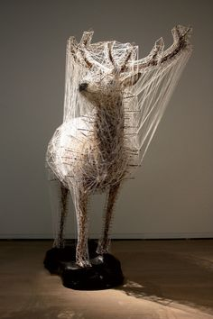 Julien salaud, constellation de la biche  taxidermy in art