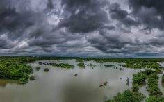 Ratargul Swamp Forest by Meer Sadi on 500px