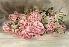 Pink Cabbage Roses - Paul de Longpre
