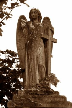 Ladywell Cemetery, London
