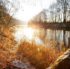 Guten Morgen! #jena #saale #jenaparadies #gras #eiskalt #moments #freitag #winter #sonnenaufgang