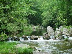 """North Carolina's Best Kept Secret """"Harper Creek"""" Excellent Fly Fishing Destination~"""