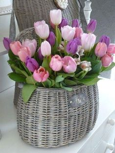 Floral Arrangement ~ Basket of tulips. Tulips Flowers, My Flower, Daffodils, Fresh Flowers, Spring Flowers, Beautiful Flowers, Flower Basket, Purple Tulips, Purple Lilac