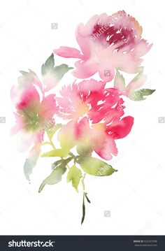 stock-photo-peony-greeting-card-watercolor-illustration-424337398.jpg (1050×1600)