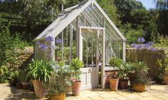National Trust Hidcote greenhouse in Wood Sage in small cottage garden Greenhouse Frame, Simple Greenhouse, Homemade Greenhouse, Lean To Greenhouse, Outdoor Greenhouse, Portable Greenhouse, Greenhouse Wedding, Greenhouse Ideas, Underground Greenhouse