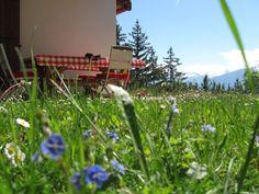Zwitserland chalet Ursa minor