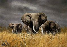 """Power of Serengeti"" by Charles Frace"