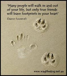 """Many people will walk in and out of your life, but only true friends will leave footprints in your heart."" ~ Eleanor Roosevelt"