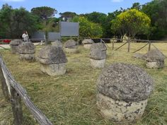 La necropoli etrusca di Monterozzi. Le sepolture villanoviane