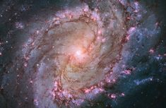 Spiral Galaxy The vibrant magentas and blues in this Hubble image of the barred spiral galaxy M83 reveal that the galaxy is ablaze with star formation. Also known as the Southern Pinwheel, the galaxy lies 15 million light-years away in the constellation Hydra.