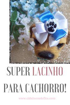 Veja como um lacinho para cachorro pode se transformar em um super laço pet!!  No blog Cida Laços de Fita #artesanato #laçospet  #pet  #lacosdefita #laçosdecetim  #façavocêmesmo