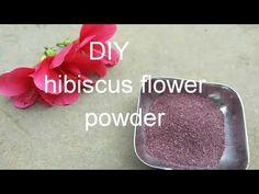 ದಾಸವಾಳ ಪುಡಿಯನ್ನು ಸುಲಭವಾಗಿ ಮನೆಯಲ್ಲಿ ತಯಾರಿಸುವ ವಿಧಾನ / diy hibiscus flower powder. - YouTube Hibiscus Flowers, Powder, Channel, Make It Yourself, Youtube, Diy, Instagram, Homemade, Hibiscus