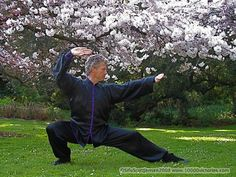 Learn Northern Shaolin Kung Fu (On which Firebending is based)