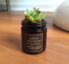 Succulent #DIY using an empty John Masters Calendula Hydrating & Toning Mask jar.