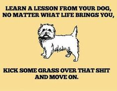Learn a lesson from your dog, no matter what life brings you, kick some grass over that shit and move on.