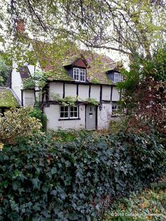 A Cottage in Totteridge