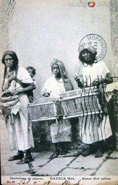 Fotos de Oaxaca, Oaxaca, México: Vendedora de Pajaros hacia 1908