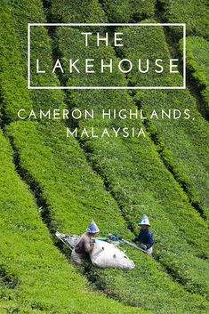 Get a break from the stifling heat of Malaysia at this wonderful Tudor style retreat up in the Highlands of Malaysia.