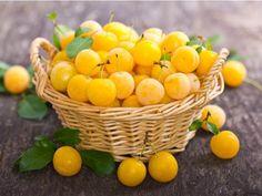 Žlutá slivoň mirabelka je malou zdravou kuličkou - Prostřeno.cz Fruit Nutrition Facts, Vegetable Nutrition, Health And Nutrition, Wild Plum Recipe, Plum Health Benefits, Y Recipe, Yellow Plums, Canning Food Preservation, Health Tips