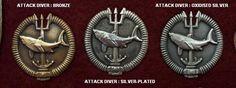 Operator's Insignia - SA Special Forces Association