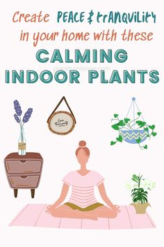 Calming indoor plants are wonderful. If you're looking for tips on how to make your indoor space more peaceful and tranquil, these indoor plants can be a great way to help you find mental happiness and peace. Air Plants, Indoor Plants, Types Of Houseplants, Low Light Plants, Low Lights, Calming, Planting Flowers, Peace, Kids