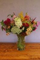 velká květina k narozeninám, květinový dárek k narozeninám, řezané sezonní květiny Plants, Plant, Planets