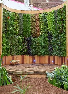 Pershore College show garden. Curved vertical green wall growing salad leaves in sections...