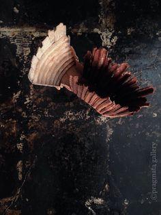 "Fantastic new artist at pragmata!   ""Theatre"" (theater) Bronze objets by Guillaume Couffignal, France.   ""テアトル"" (劇場) ブロンズオブジェ、ギヨッム・クッフィニャル、フランス。 #bronze #metal_art #gallery #Tokyo"