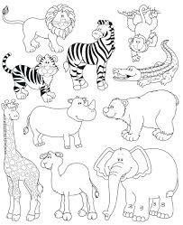 Animales Herbivoros Carnivoros Y Omnivoros Para Colorear