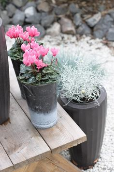 Self Watering, Container Gardening, Front Porch, Fall Decor, Xmas, Interior Design, Patio, Green, Flowers