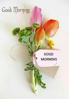 If you want to send good morning love images to your friends and relatives then you have the best good morning images available on our website. Good Morning Love You, Good Morning Beautiful Images, Good Morning Texts, Happy Morning, Good Morning Gif, Good Morning Picture, Good Morning Quotes, Morning Thoughts, Morning Post