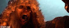 Go to Hell, Max! #Krampus #movie #horror (WTF Watch The Film) https://123wtf.me/2016/03/28/wtf-krampus-2015/