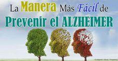 Los investigadores sugieren que existe una poderosa conexión entre su alimentación y su riesgo de desarrollar la enfermedad de Alzheimer, en maneras similares que las que causan diabetes tipo 2. http://articulos.mercola.com/sitios/articulos/archivo/2014/07/31/relacion-azucar-y-demencia.aspx