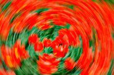 MAREO, VÉRTIGO, todo gira a mi alrededor... SIENTO que me CAIGO... TENGO MIEDO de caminar por la VEREDA! https://fibromialgiadolorinvisible.blogspot.com.ar/2015/01/mareo-vertigo-todo-gira-mi-alrededor.html Foto: www.saludymedicinas.com.mx