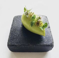 Gourmet Food Plating, Gourmet Appetizers, Gourmet Recipes, Cooking Recipes, Modernist Cuisine, Bistro Food, Hotel Food, Weird Food, Food Presentation