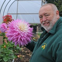 Big And Beautiful, Beautiful Roses, Flowers, Plants, Gardens, England, Win Prizes, Dahlias