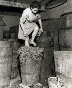 A woman stomping grapes for wine in Frascati, Italy. Vintage Italy, Vintage Wine, Vintage Ads, Italian People, Italian Wine, Old Pictures, Old Photos, Vintage Pictures, Nostalgic Pictures
